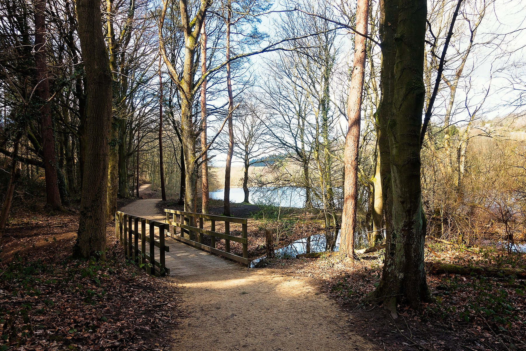 Walking around More Hall Reservoir