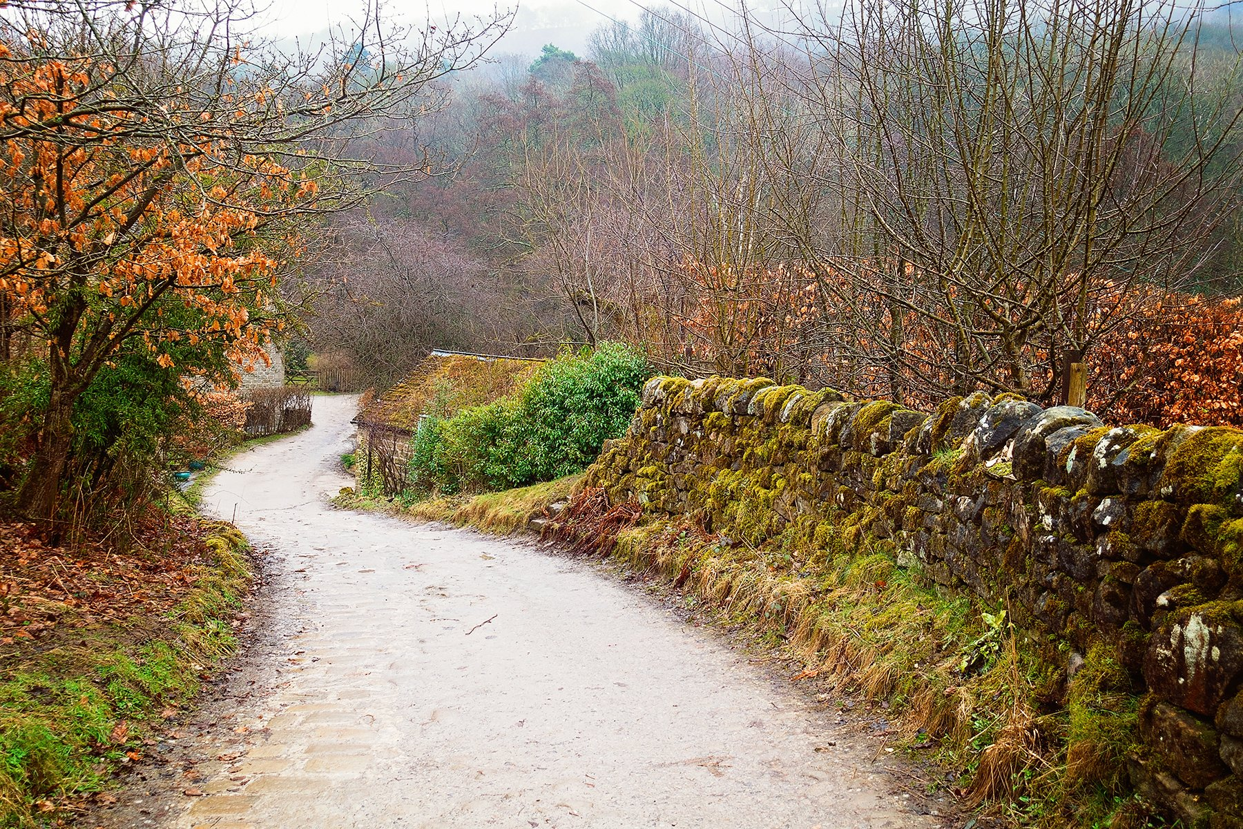 Padley Gorge walk in the Peak District