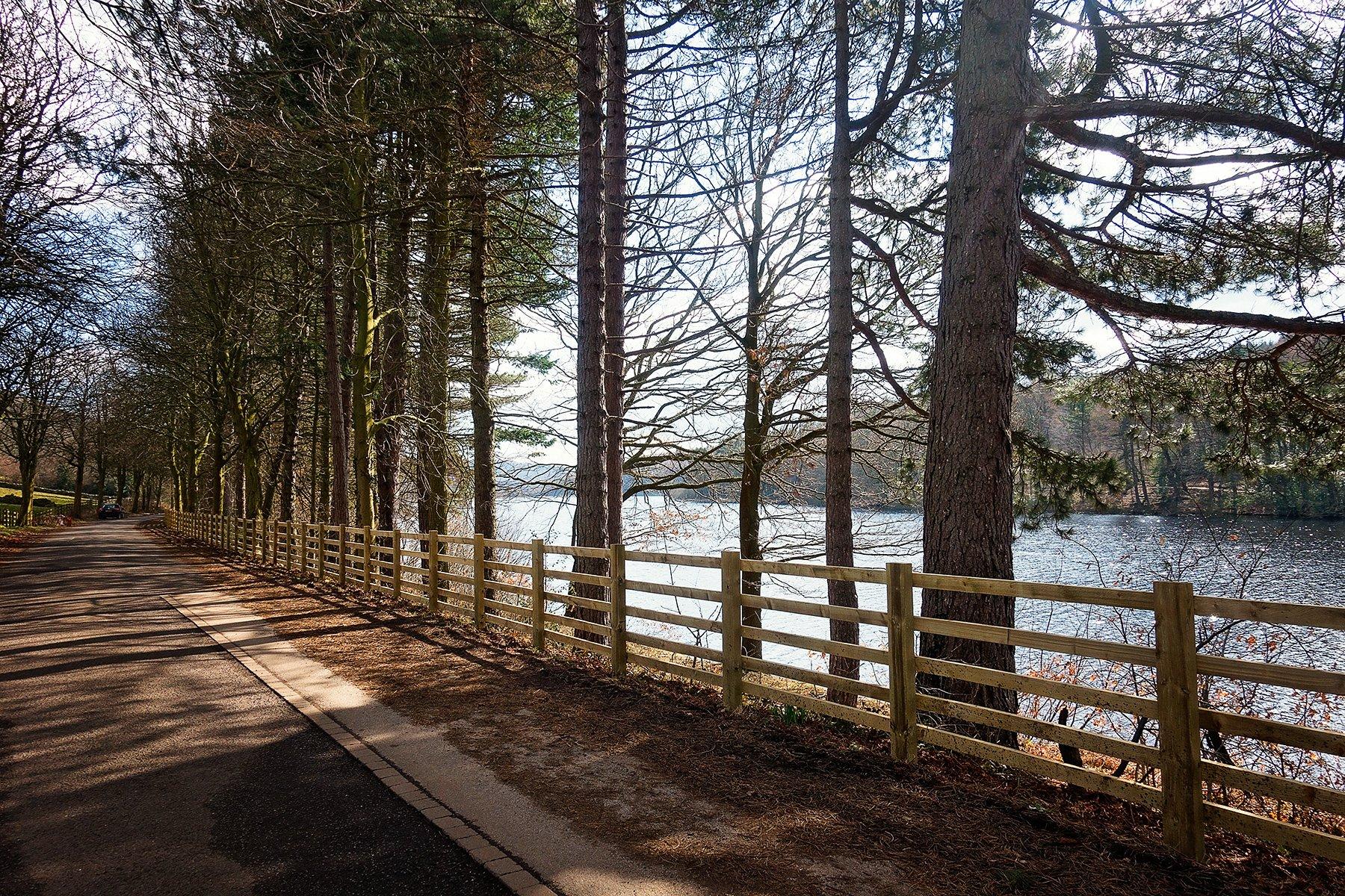 Easy walk around More Hall reservoir.
