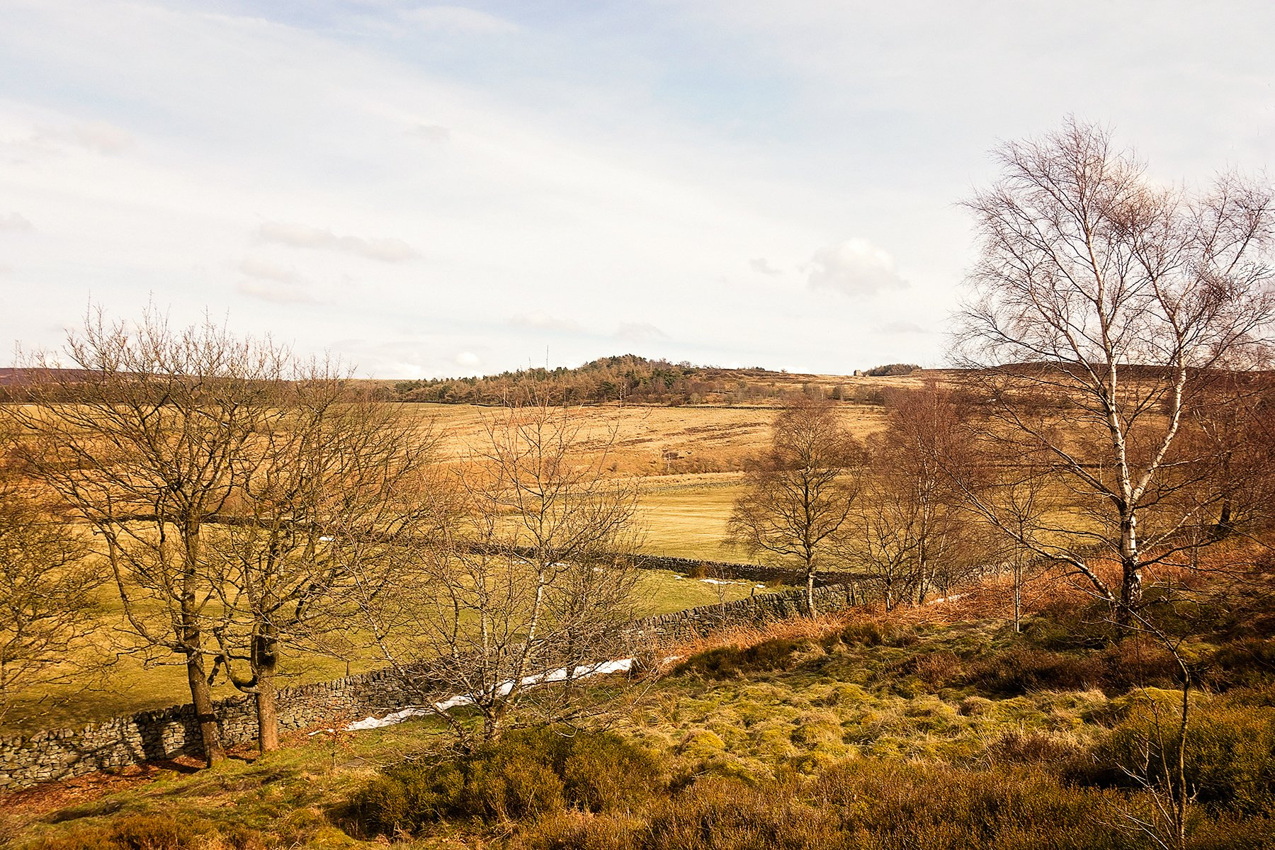 Longshaw to Tumbling Hill walk in the Peak District