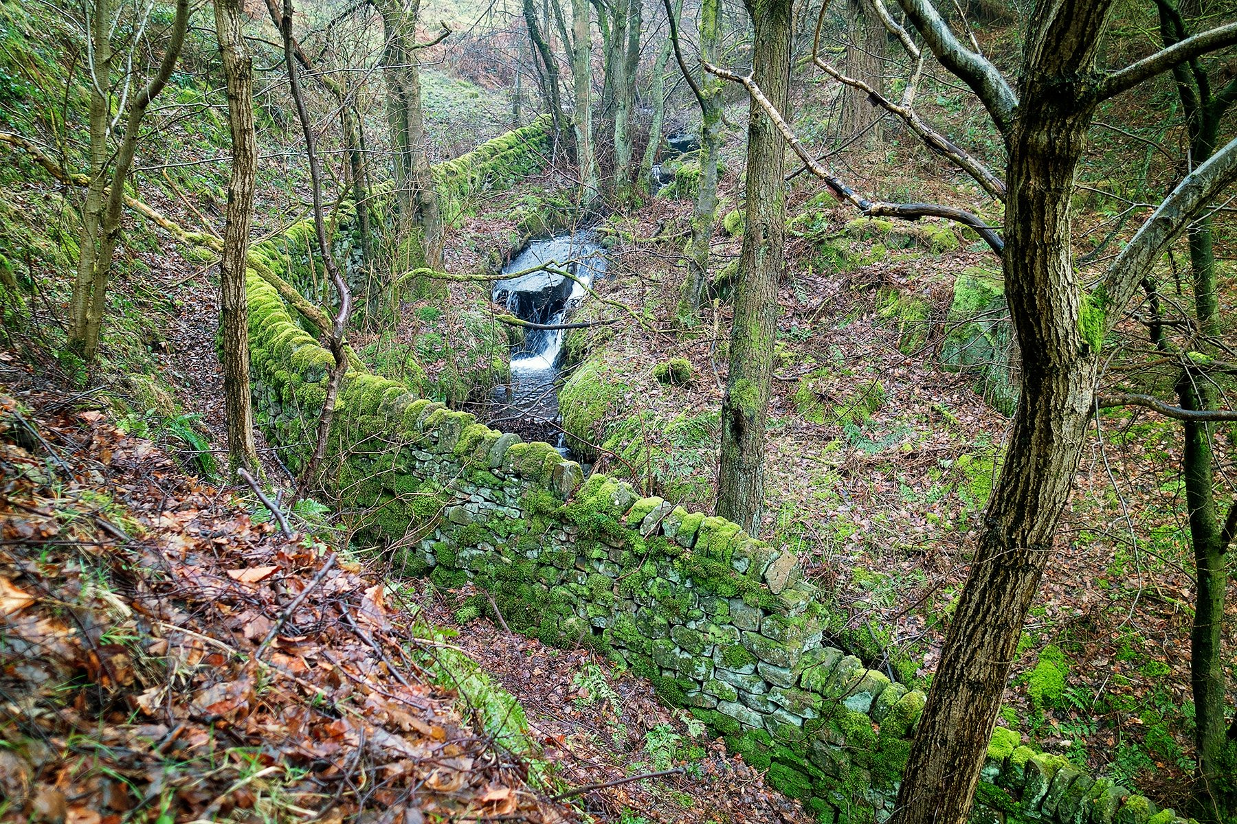 Beautiful Padley Gorge walk in the Peak District