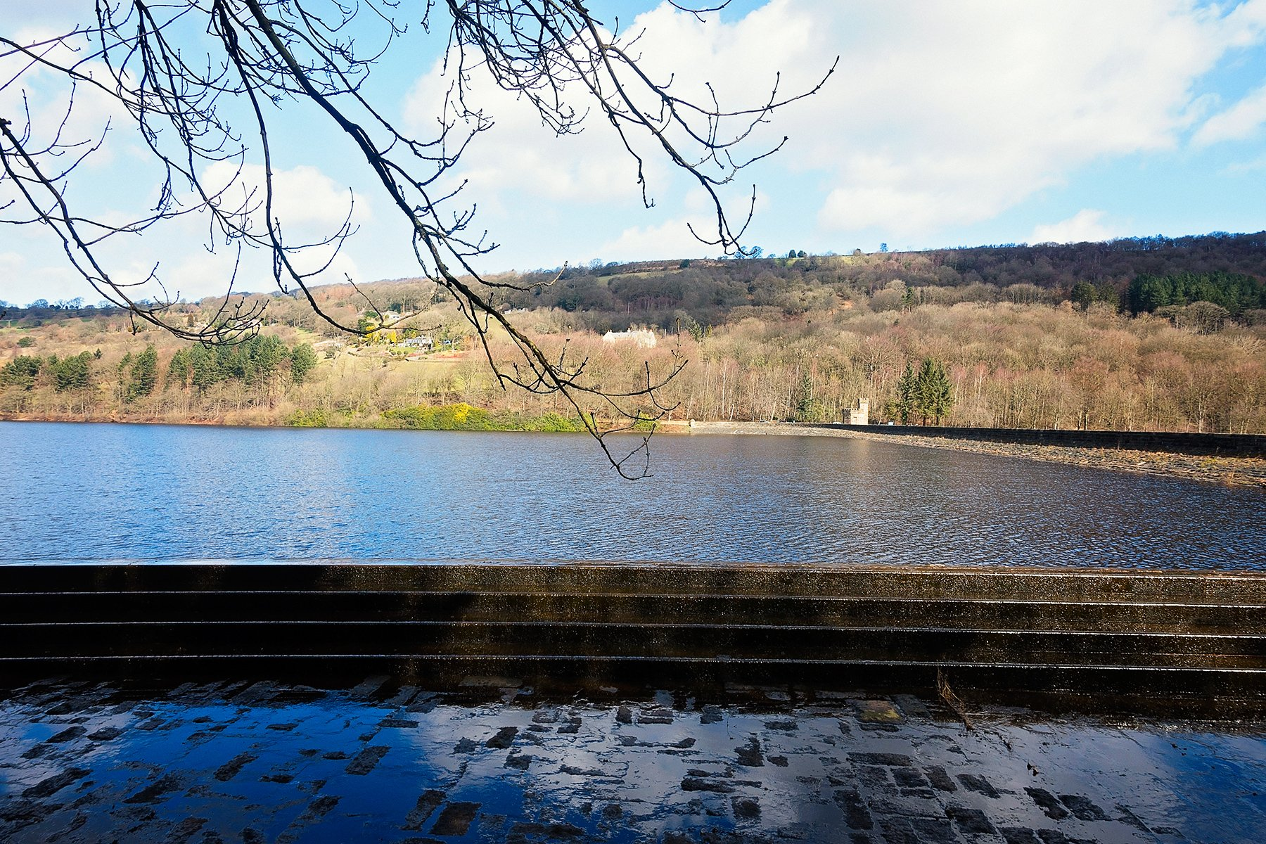 Sunny day at More Hall reservoir