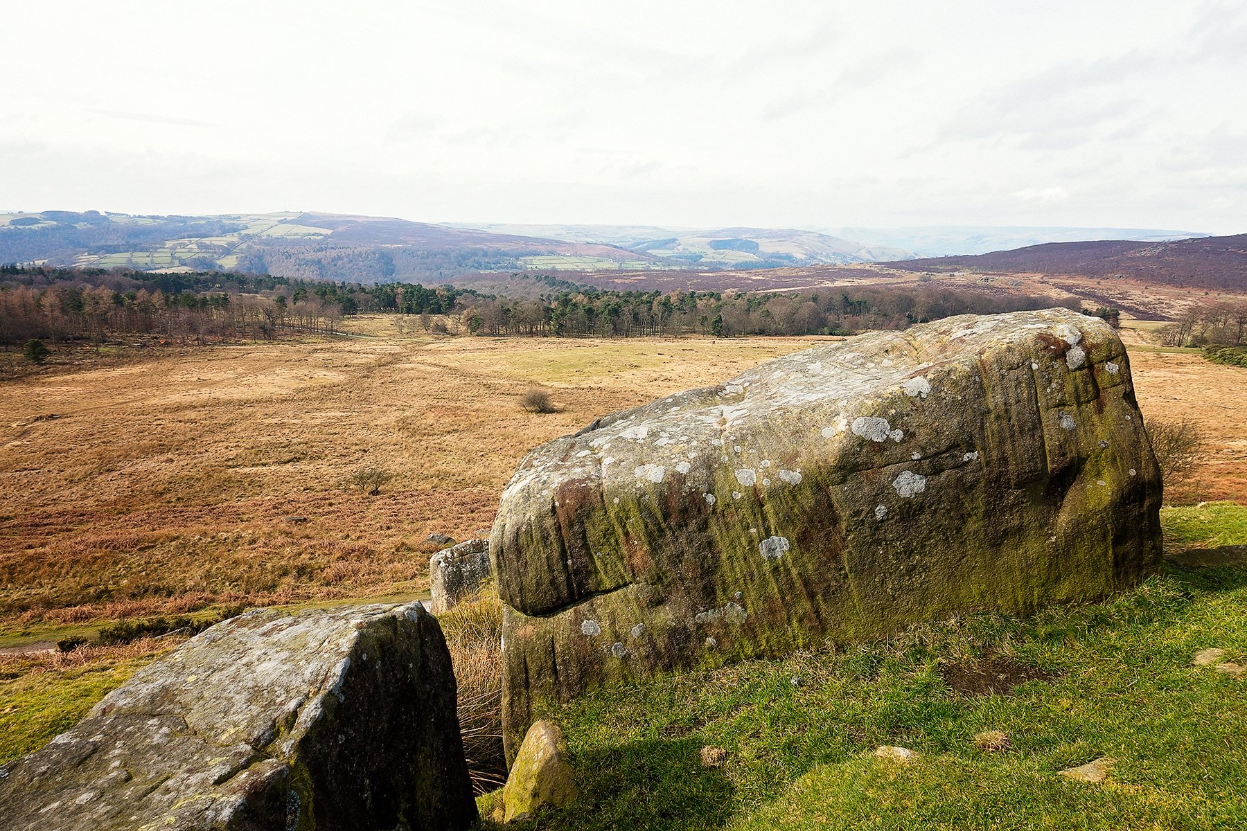 View over Longshaw