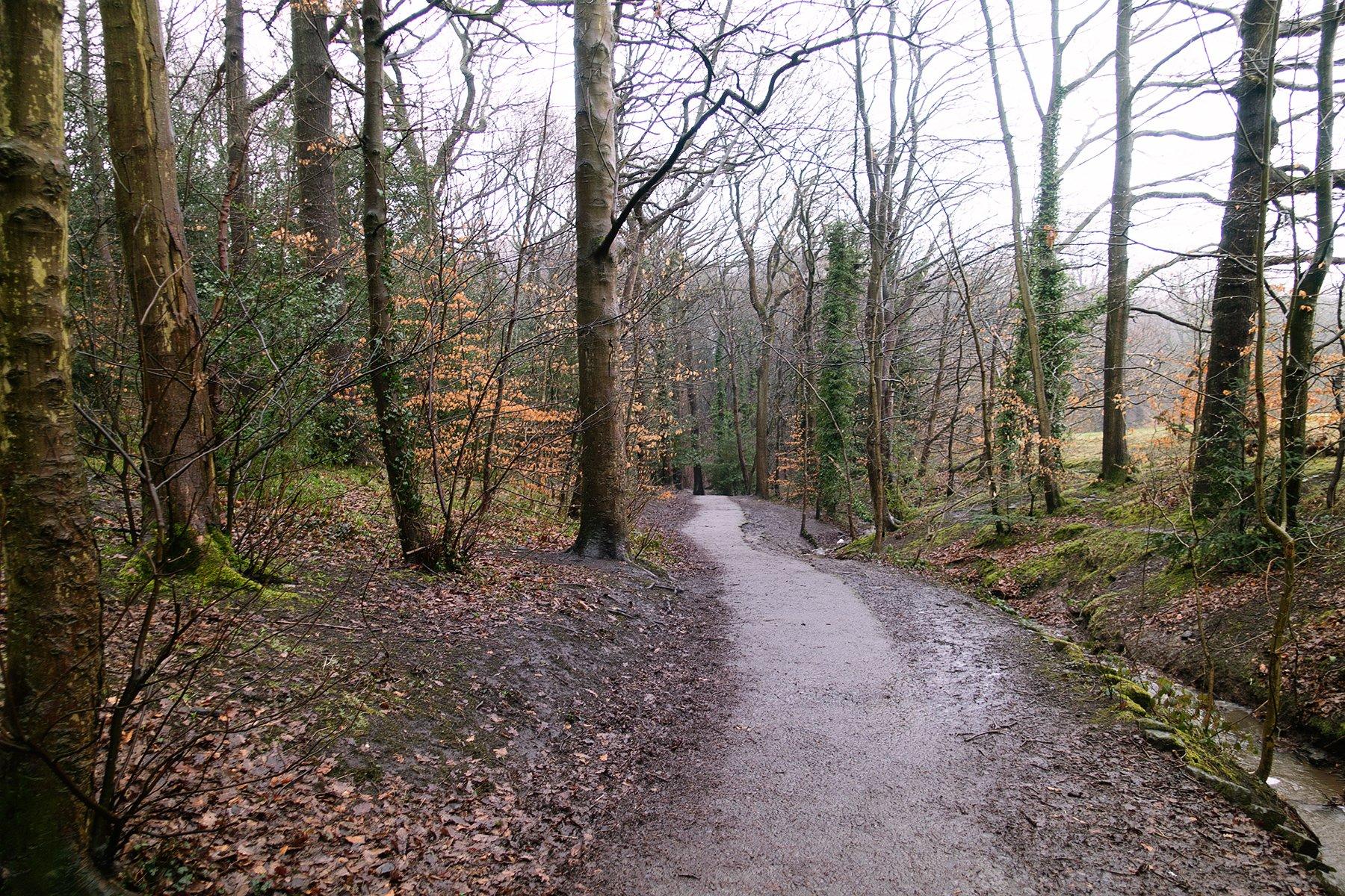 Walking in Graves Park