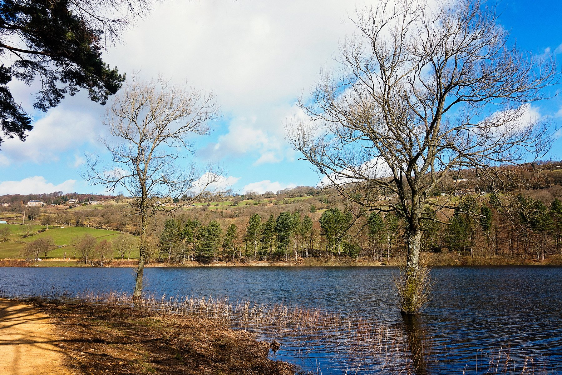 Sunny More Hall reservoir