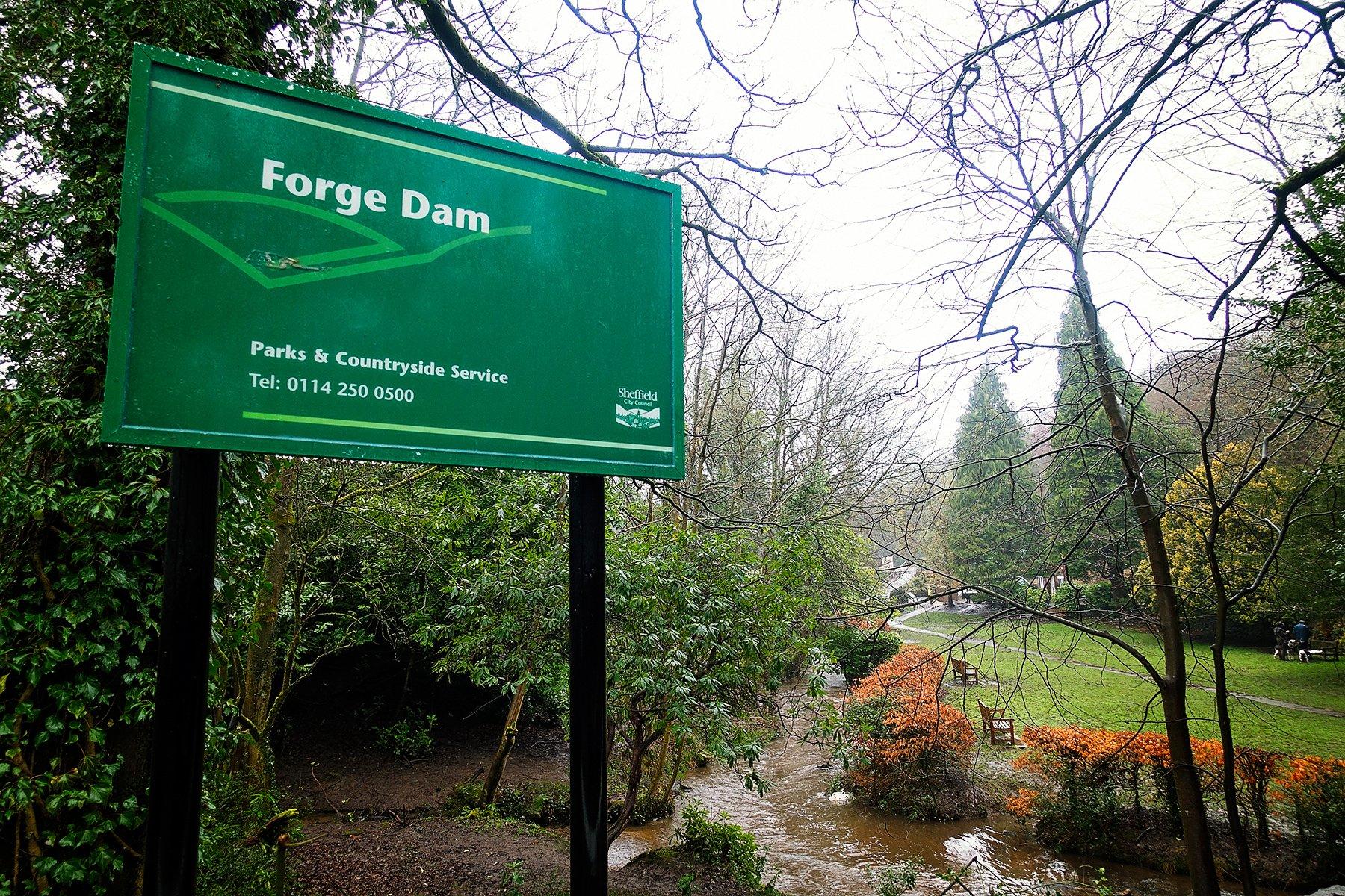 Forge Dam in Sheffield walk