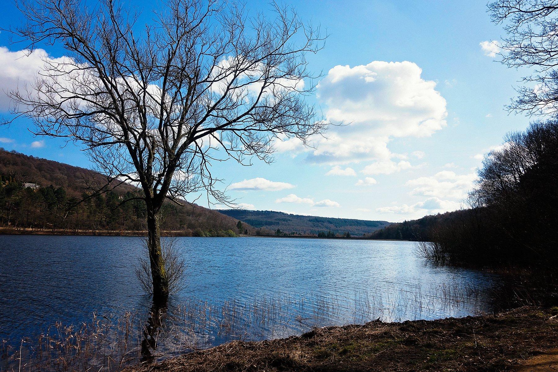 Overlooking More Hall reservoir