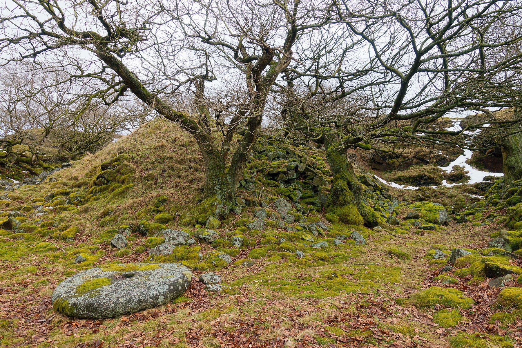Dobb Edge and its millstones