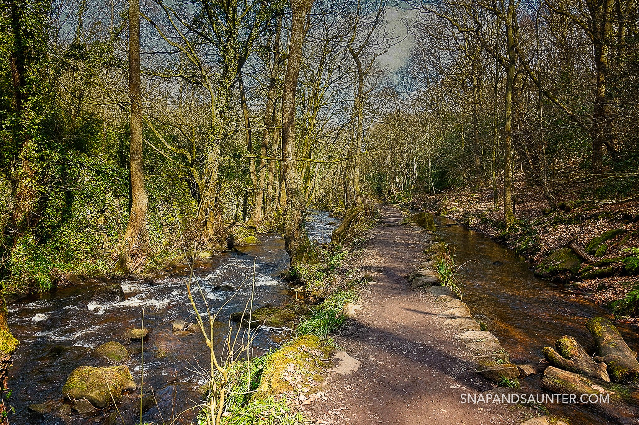 path at Rivelin Valley in Sheffield