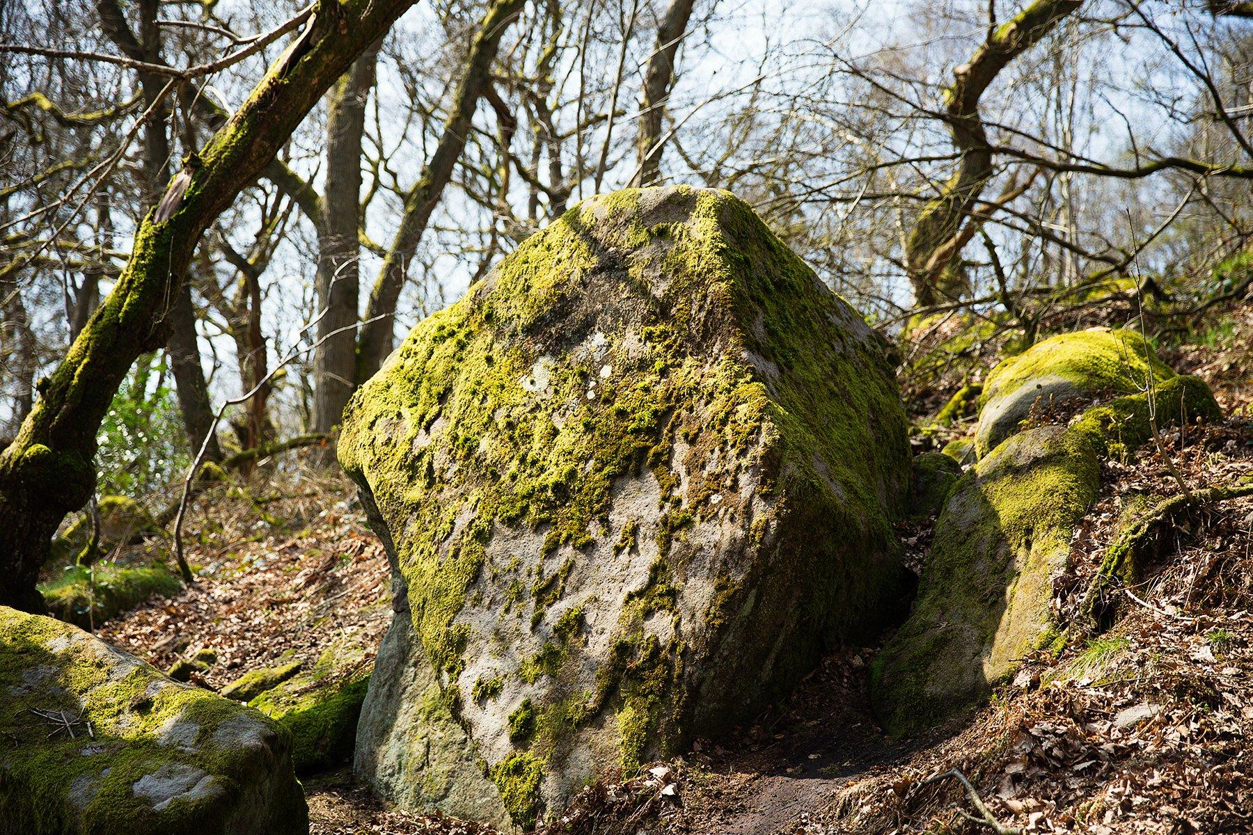 Padley Gorge stones