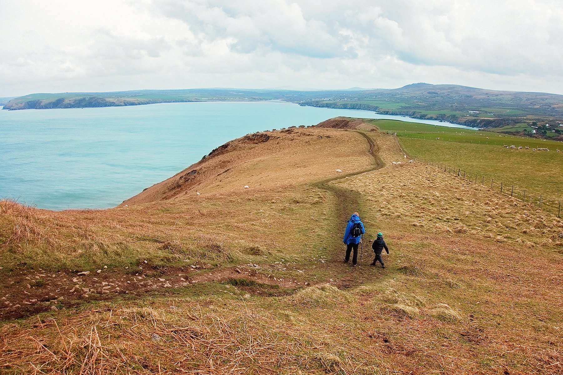 Coast path on Dinas Island