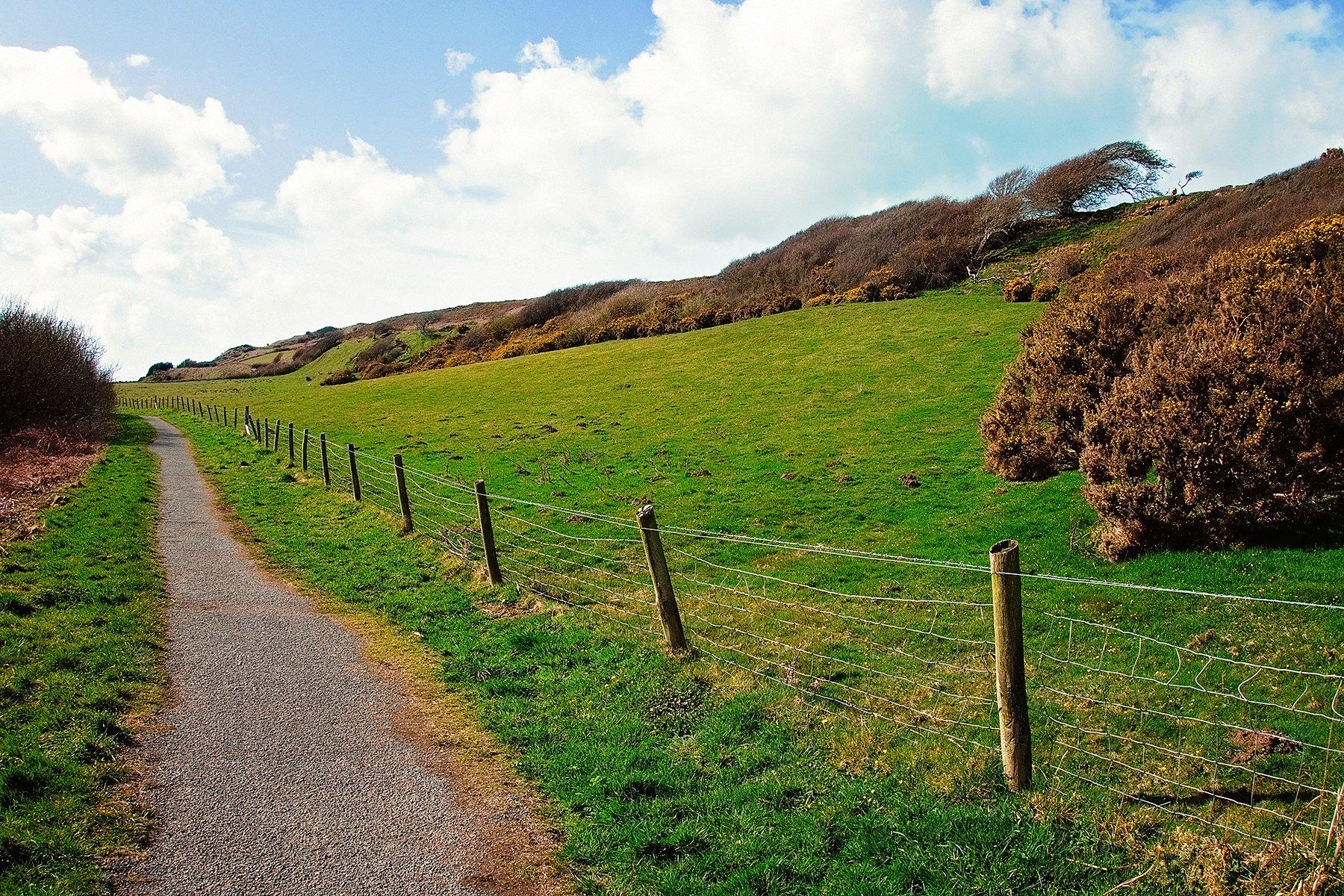 Walk around Dinas Island in Pembrokeshire