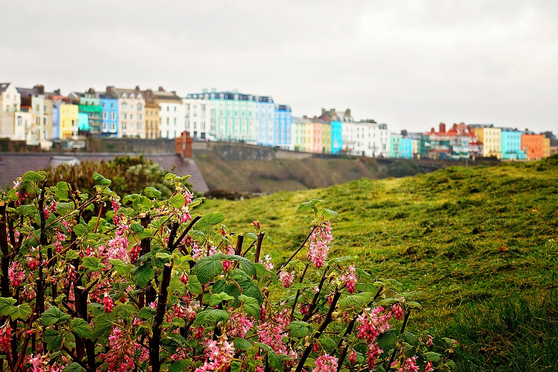 Seaside Tenby in Pembrokeshire
