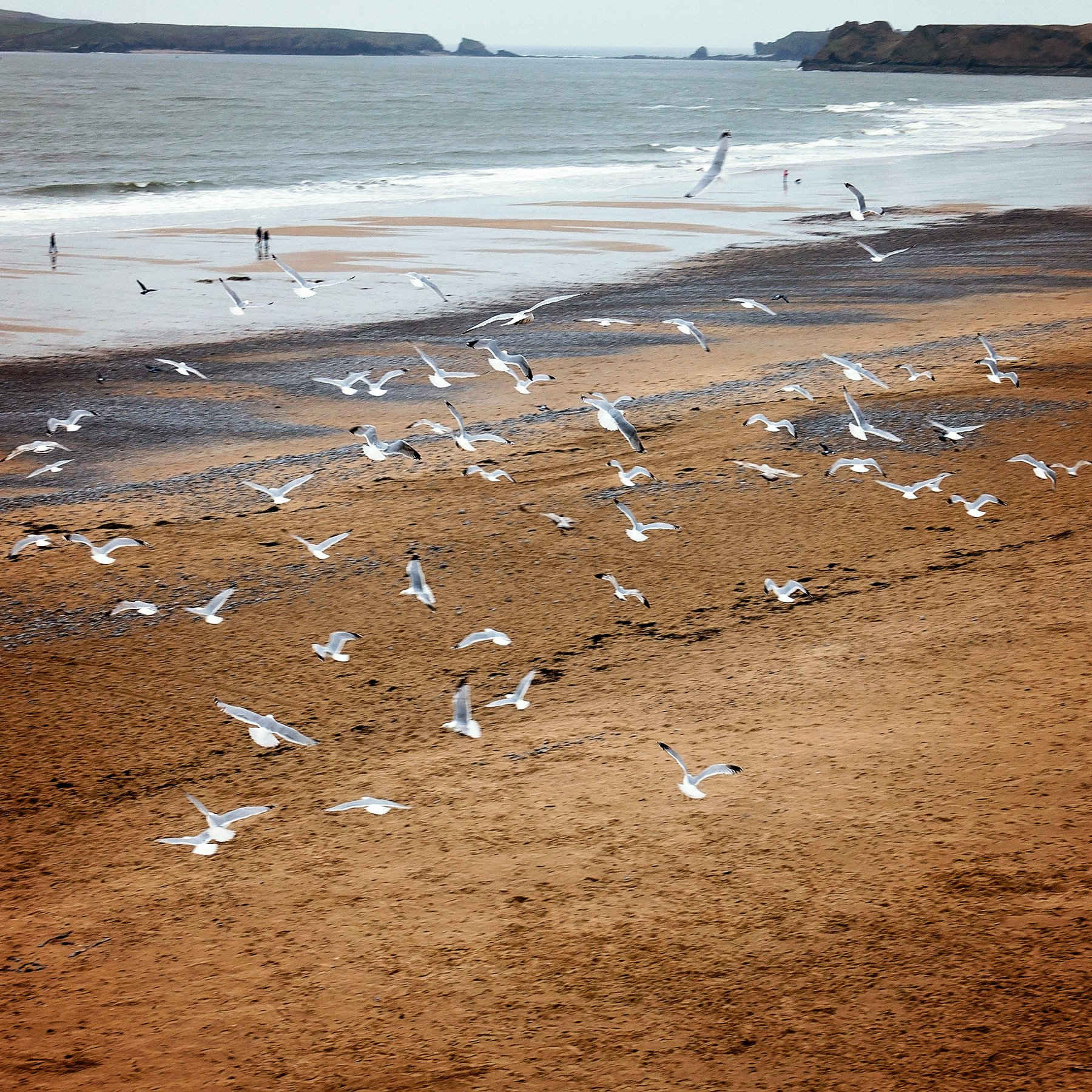 Castle beach in Tenby