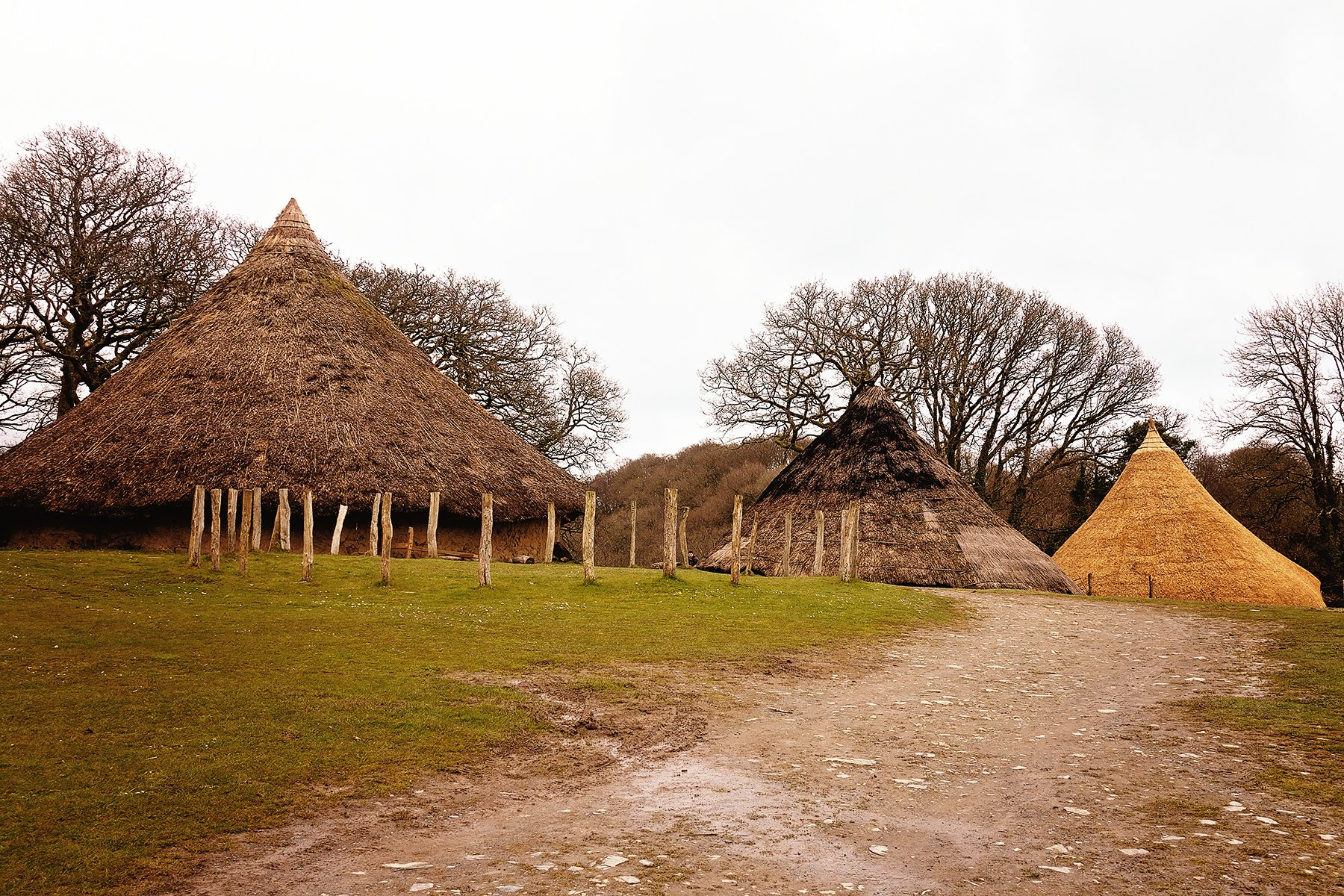 Iron Age Village at Castell Henllys in Pembrokeshire