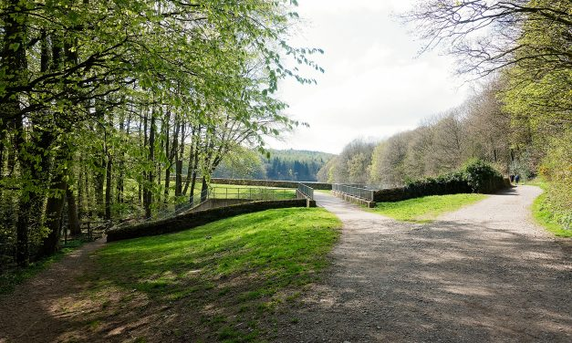 LINACRE RESERVOIRS, DERBYSHIRE
