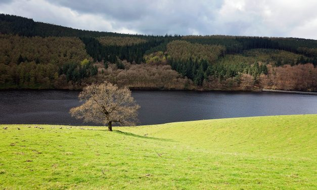 LADYBOWER RESERVOIR – PART 1