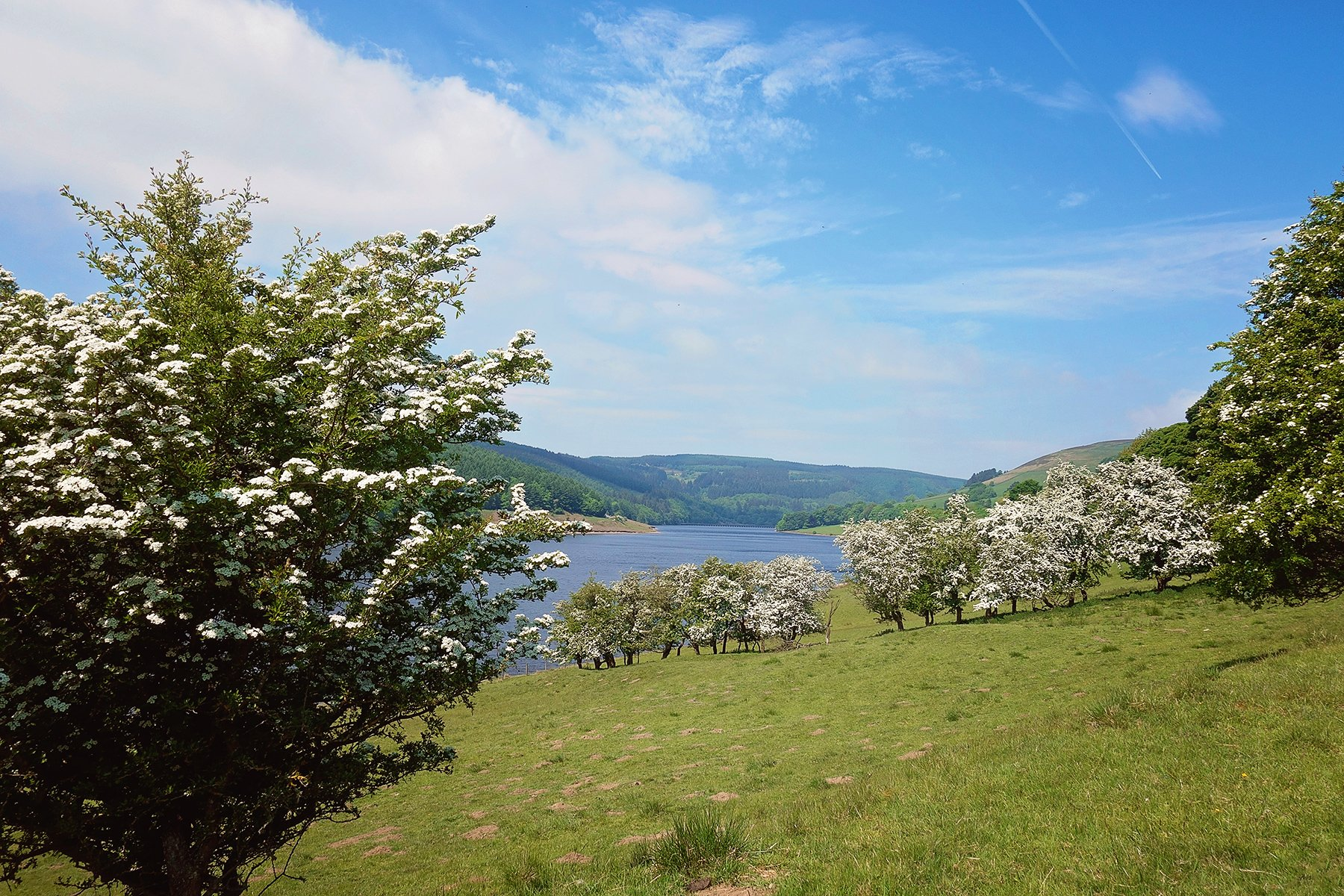 Perfect walk around Ladybower Reservoir