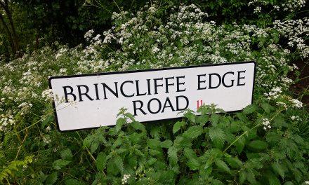 BRINCLIFFE EDGE WOOD, SHEFFIELD