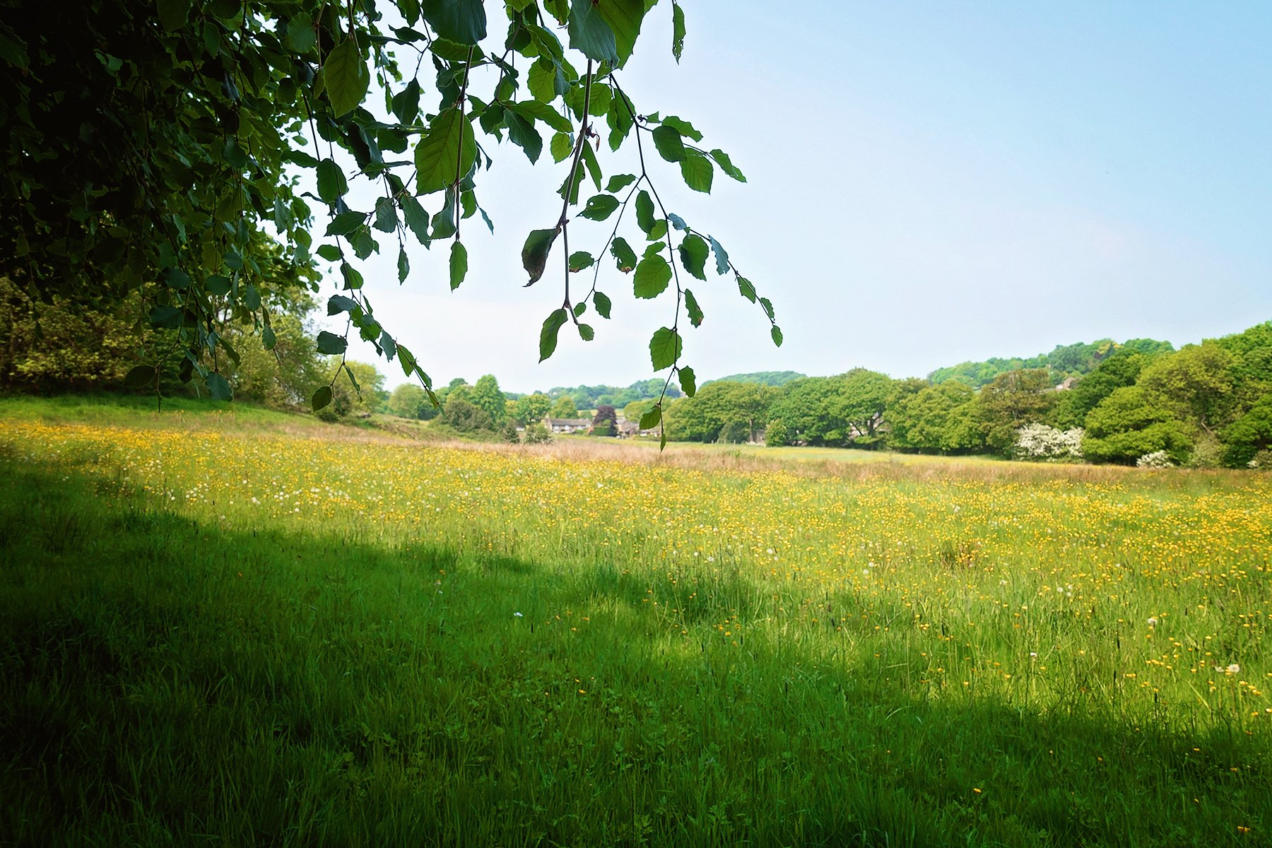 Mayfield Valley in Sheffield