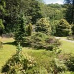 WHIRLOW BROOK PARK – A LITTLE GEM IN SHEFFIELD