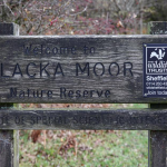 BLACKA MOOR NATURE RESERVE, SHEFFIELD
