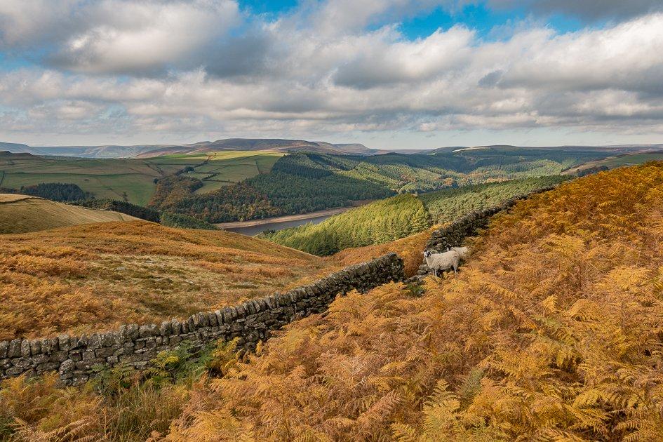 Derwent Edge walk in Derbyshire