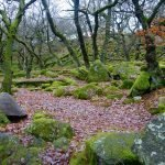 NATIONAL TRUST LONGSHAW DROP-IN WALK, DERBYSHIRE