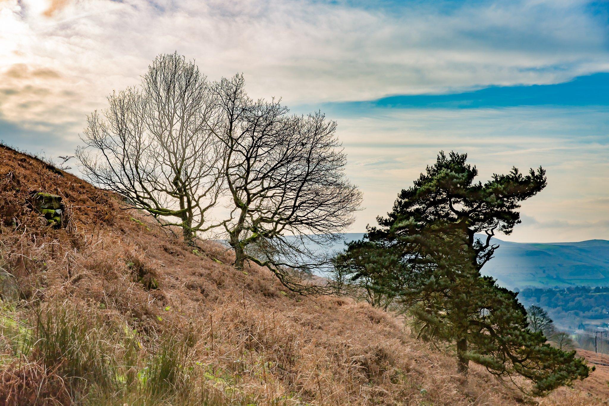 Bamford Edge in the Peak District