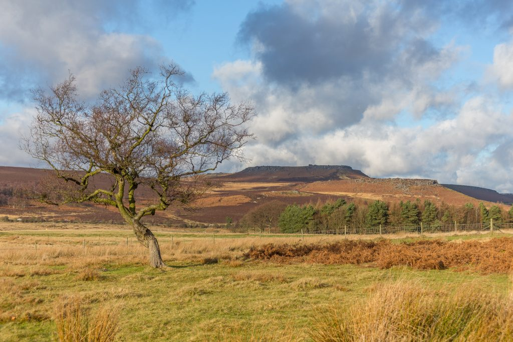December walk challenge in Longshaw