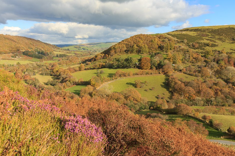 Gilfach nature reserve in Wales