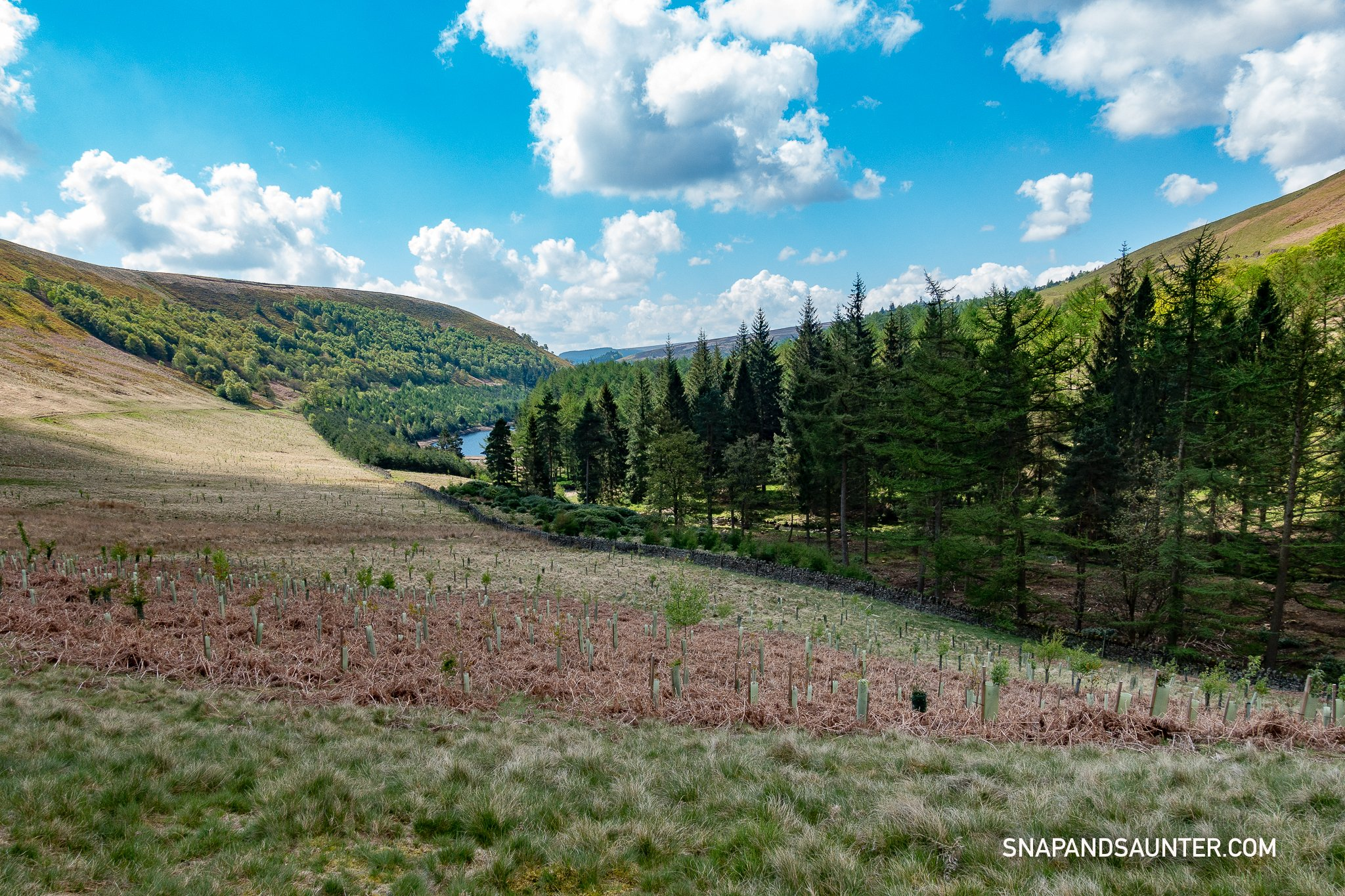 Upper Derwent Valley view