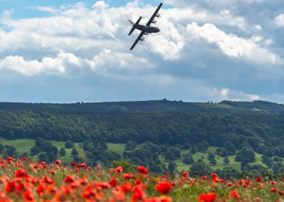 hercules plane flying over a poppy field