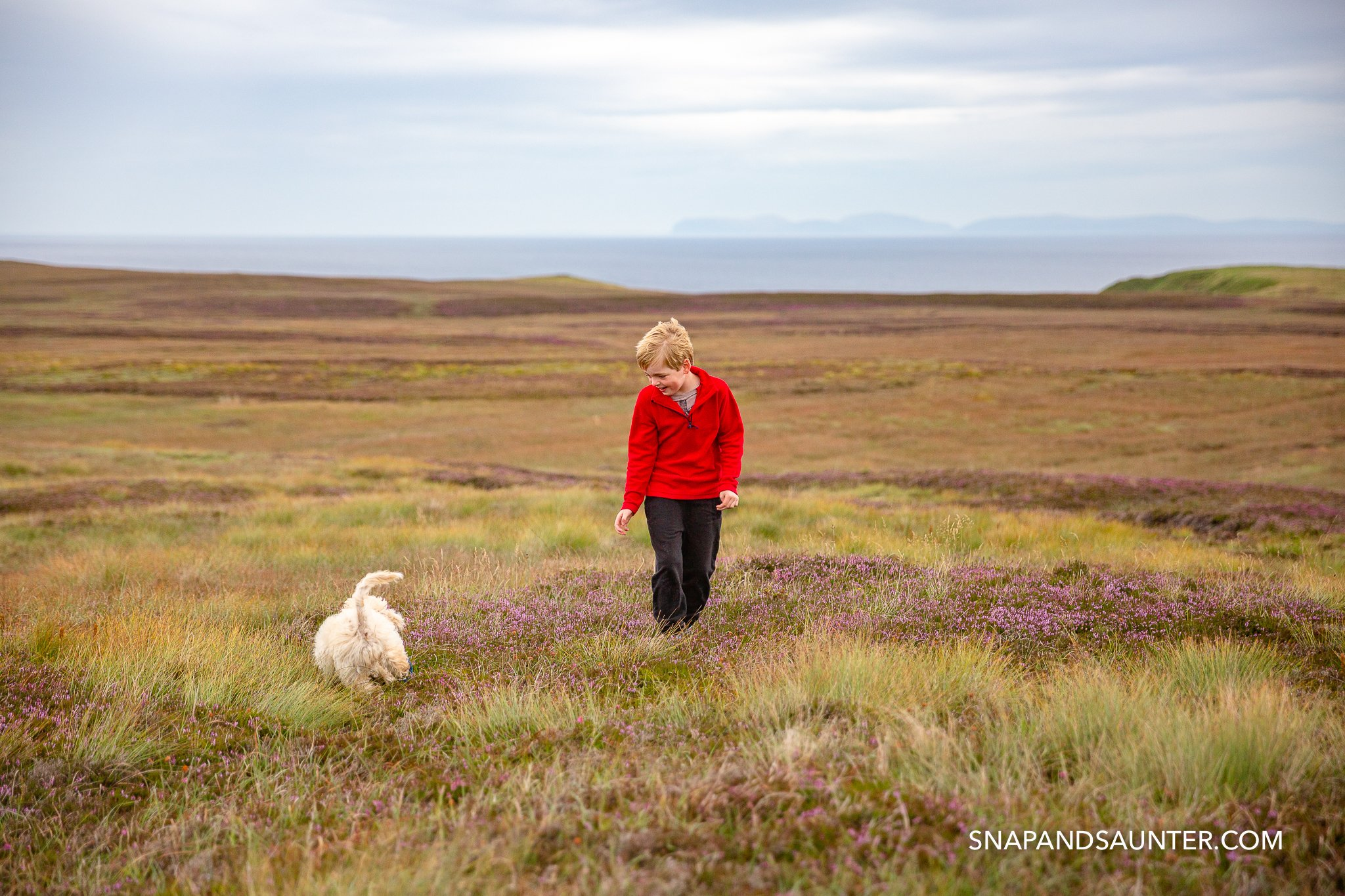 A boy playing with a dog in moorland in Scotland