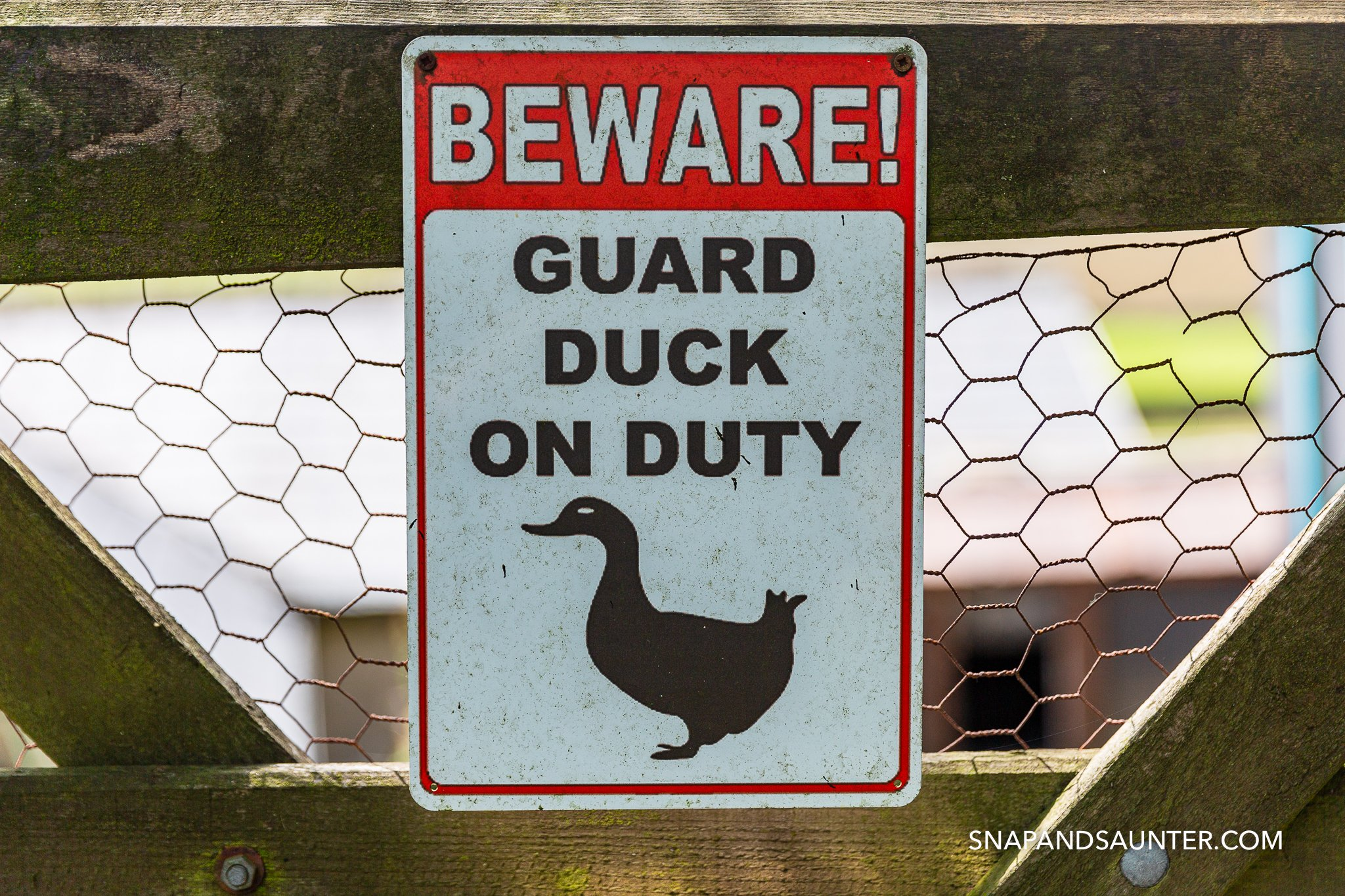 Sign saying Beware Guard duck on duty